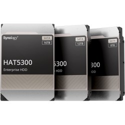Synology HAT5300- 12T